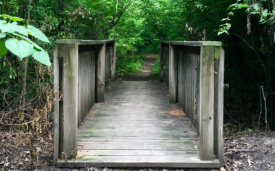 Top 5 Things to Do at Cheeney Creek Natural Area