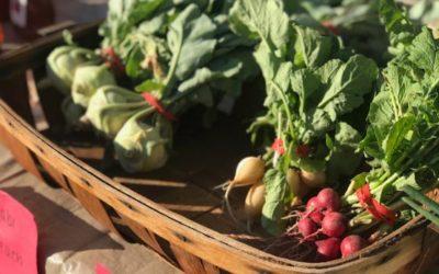 Fair Farms & Produce