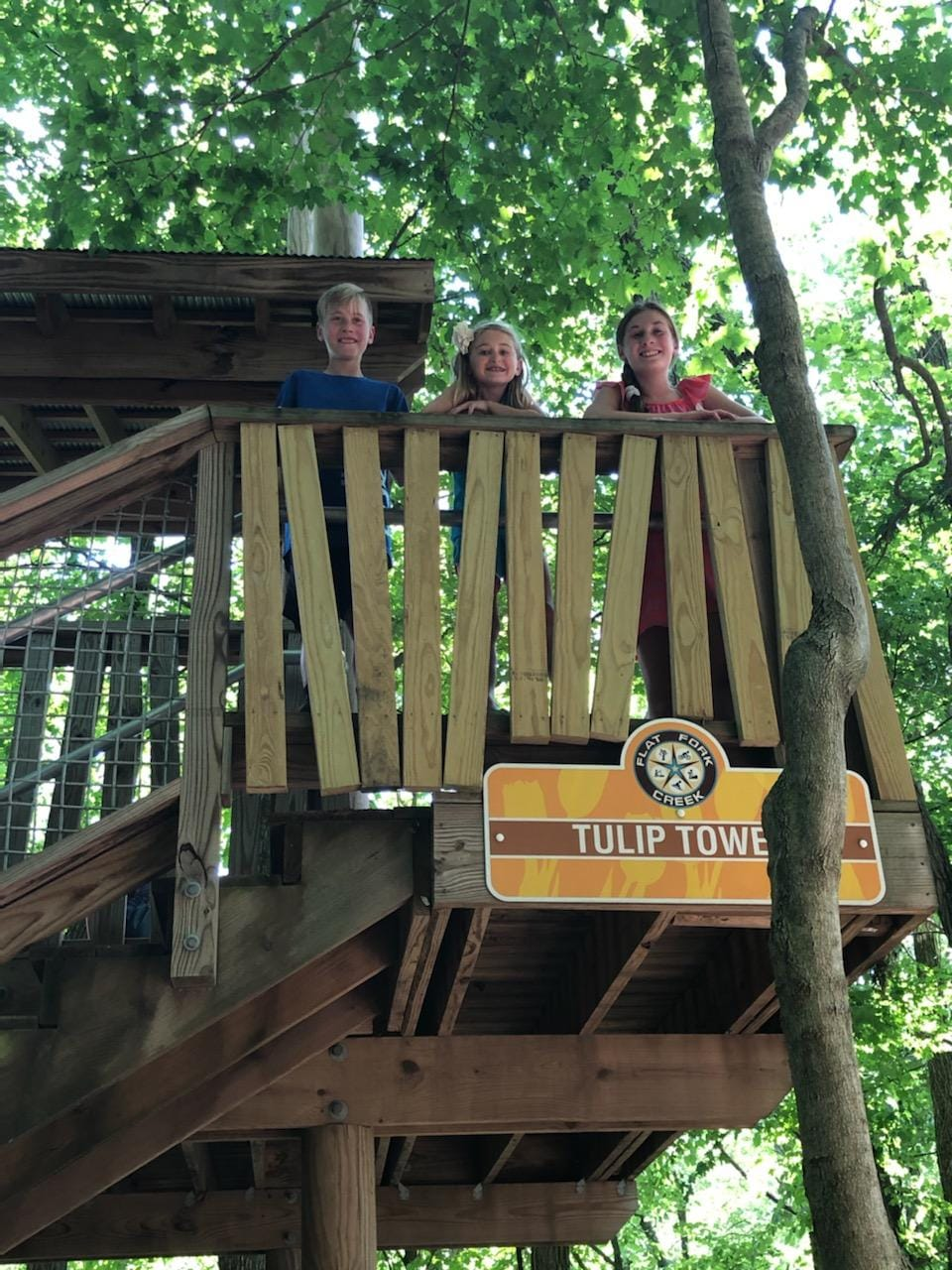 kids in tree house
