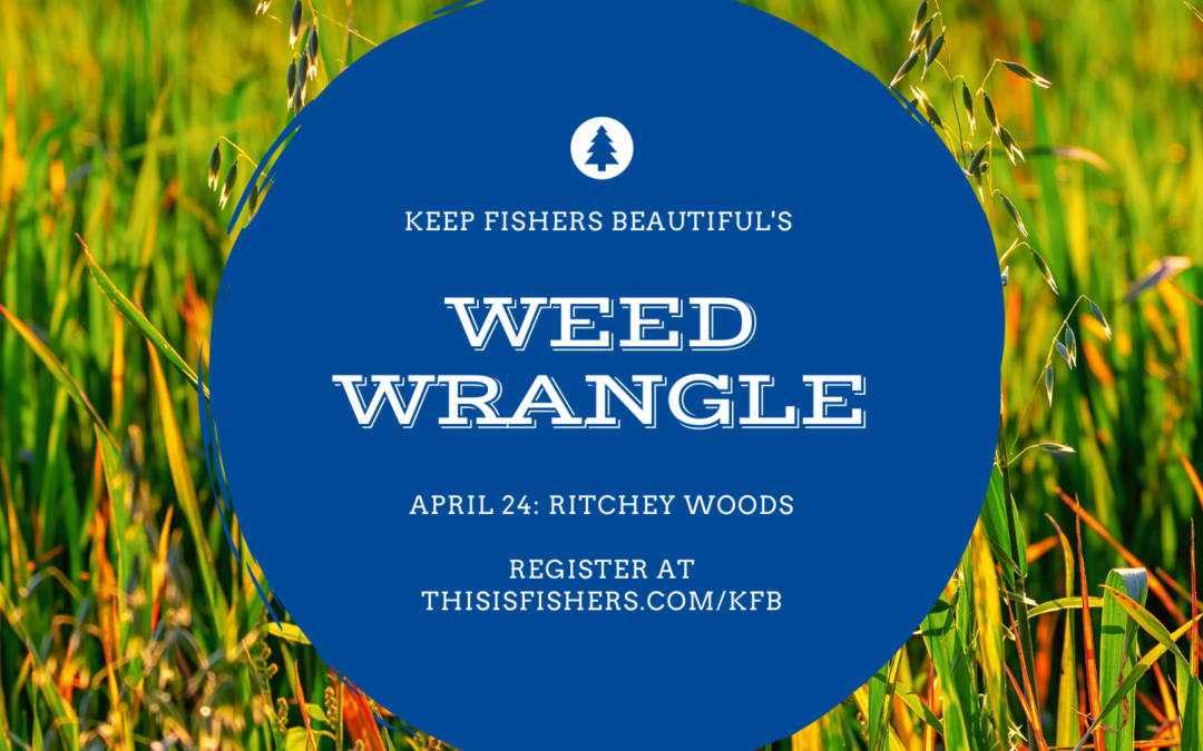 Weed Wrangle: Ritchey Woods Nature Preserve