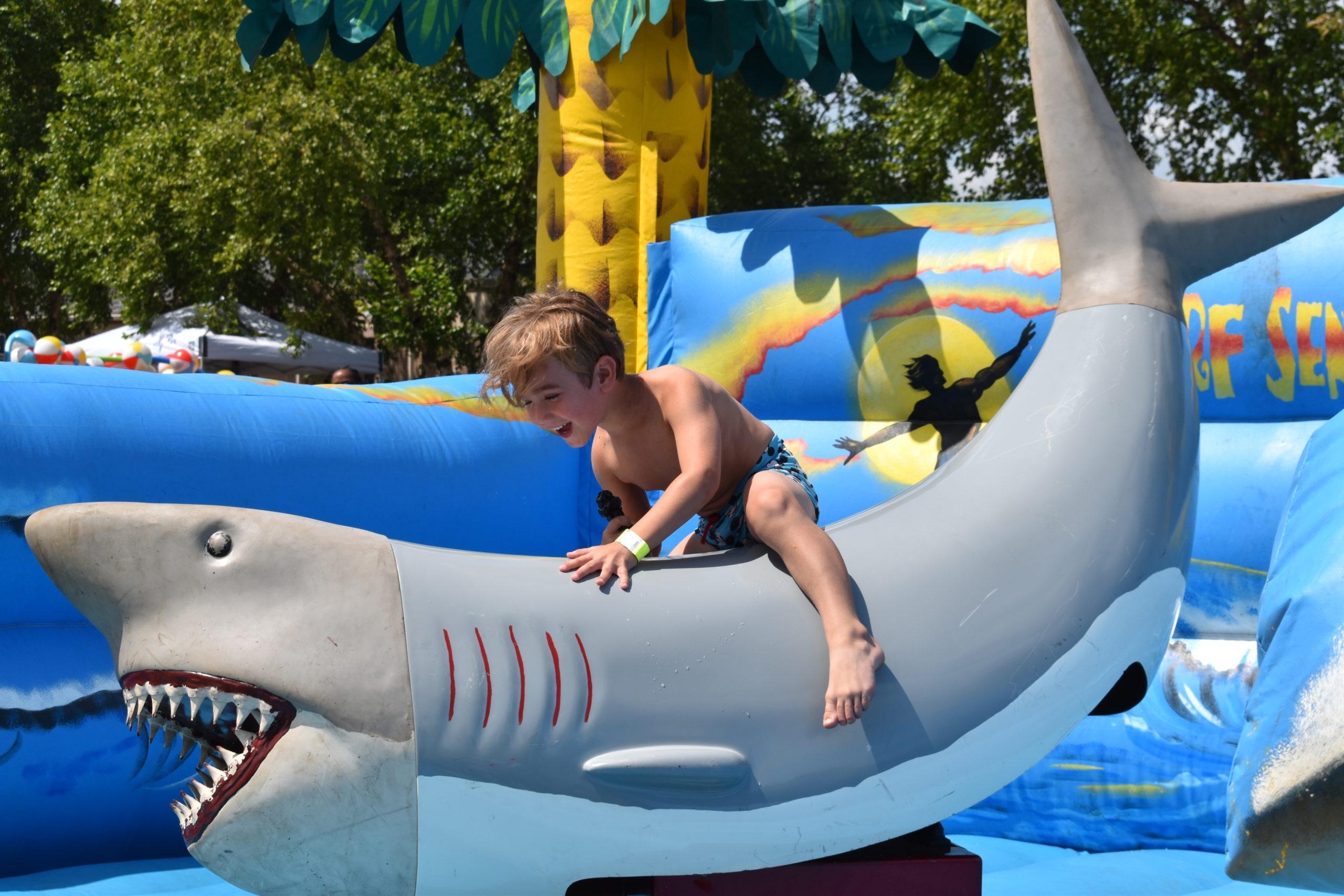 BOY ON MECHANICAL SHARK