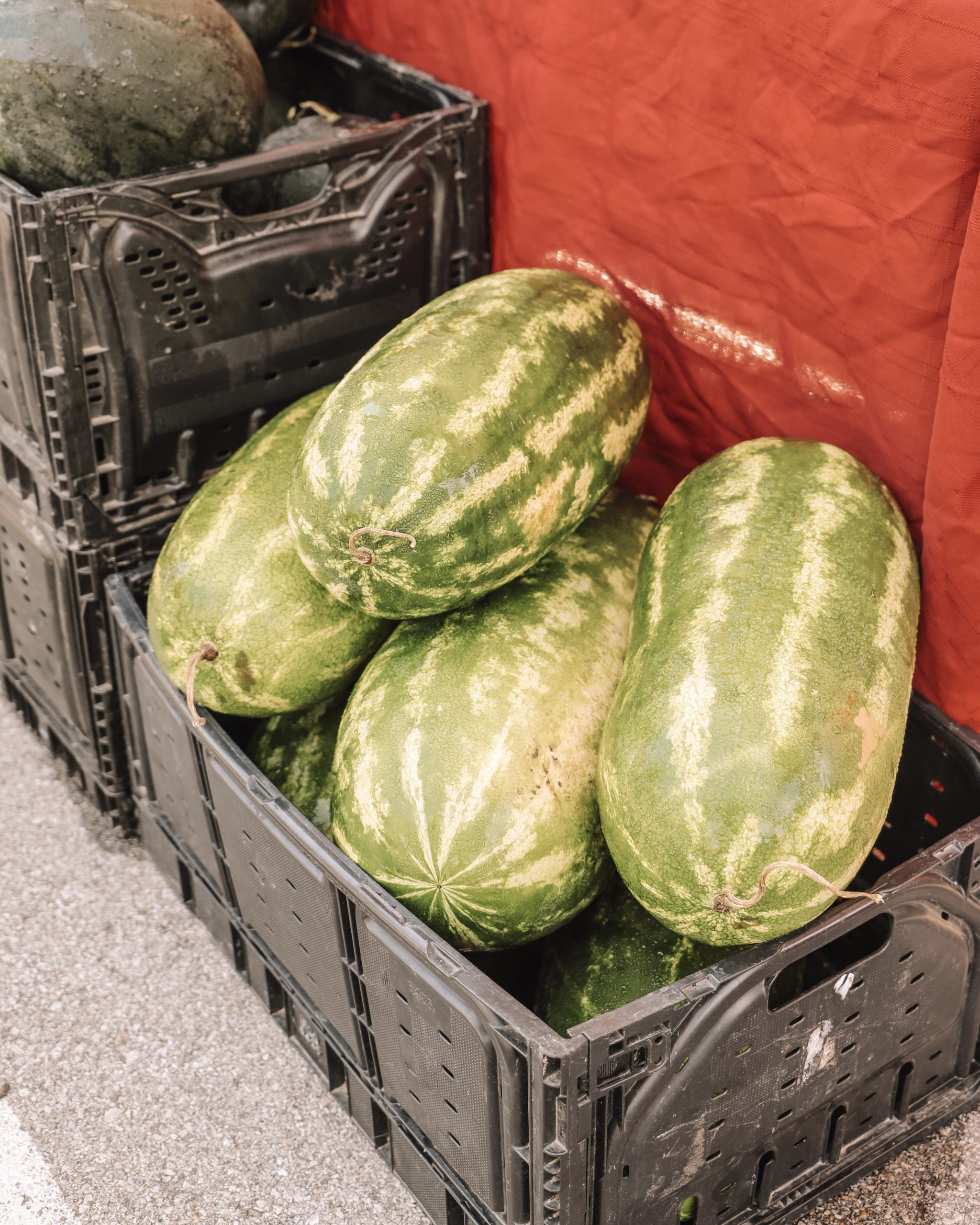 watermelons in a basket