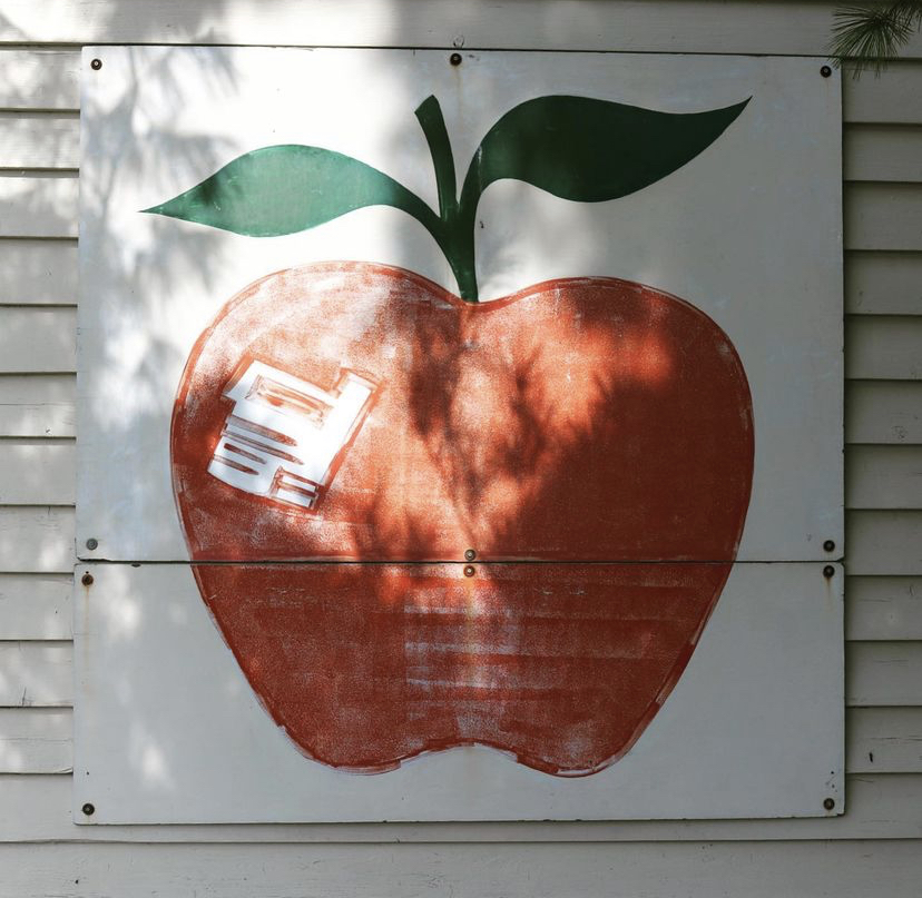 a picture of a painted apple