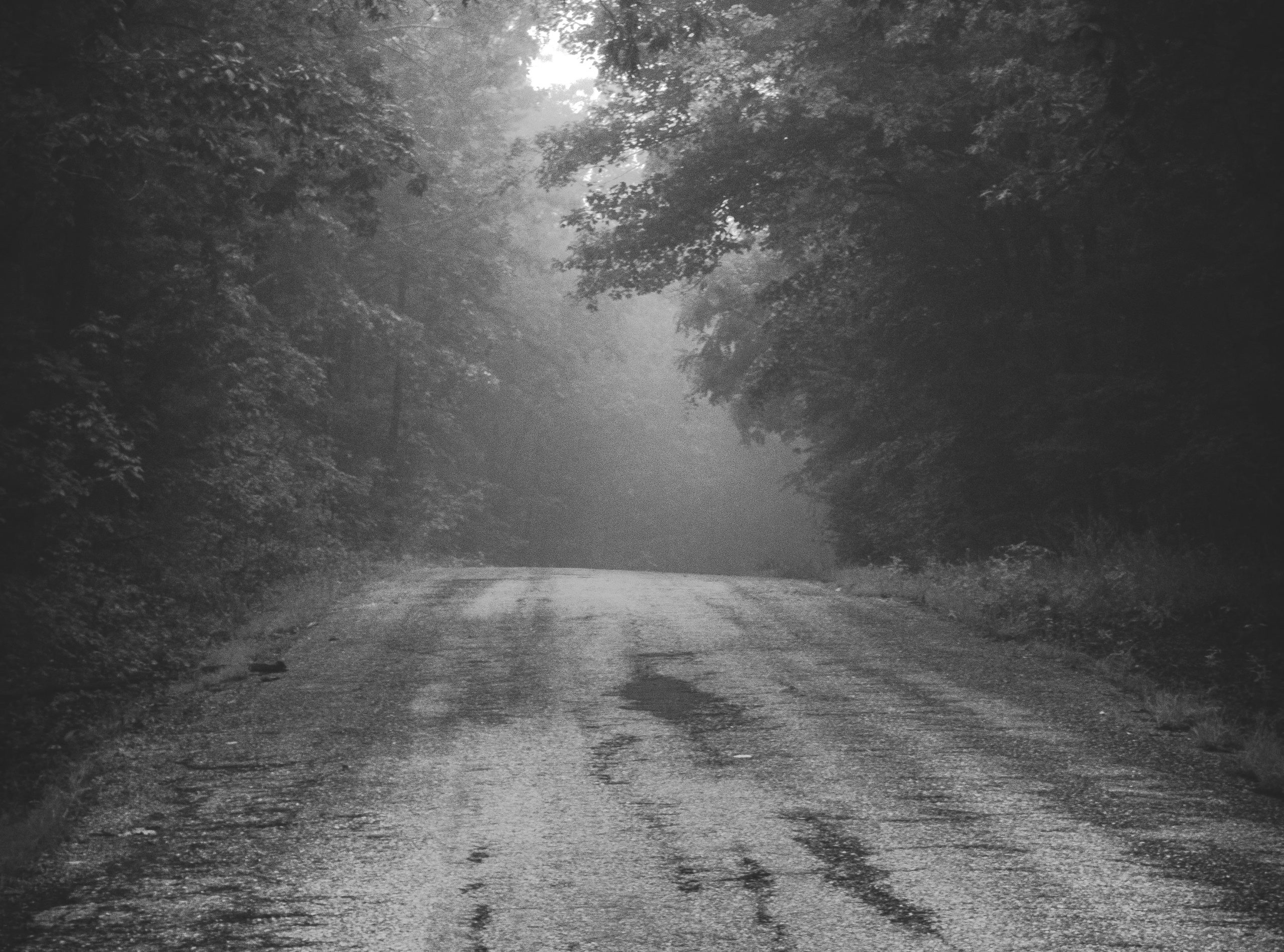 a black and white photo of a bare road